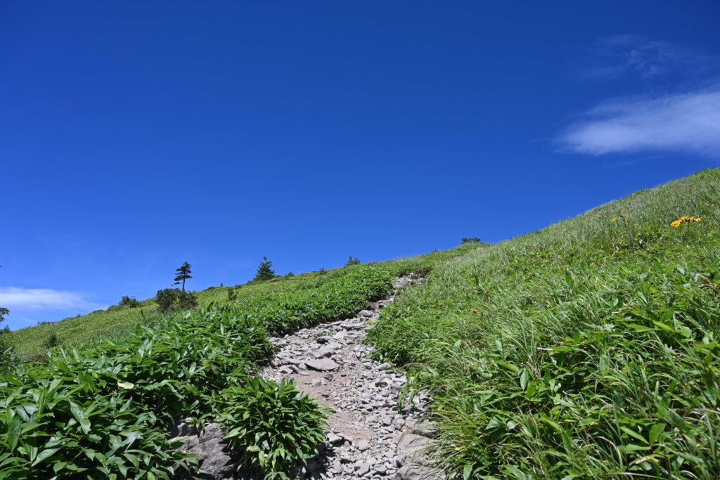 根子岳登山道
